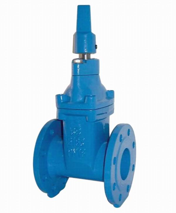 BS 5163 GATE VALVE - NRS, RESILIENT SEATED
